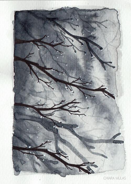 trees-rain